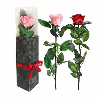 Ecuadorian Preserved Rose In A Luxury Gift Box, Last Up To A Year