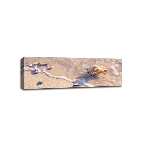 Seashell - Beach Photography - 36x12 Gallery Wrapped Canvas Wall Art