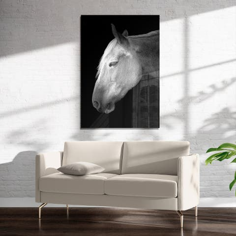 BELGIAN HORSE Art on Acrylic By Farmhouse Chronicles