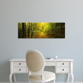 Easy Art Prints Panoramic Images's 'Dirt road passing through a forest, Vermont, USA' Premium Canvas Art