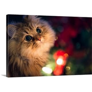 Premium Thick-Wrap Canvas entitled Cat in front of Christmas tree|https://ak1.ostkcdn.com/images/products/is/images/direct/f83bf91b598f3f889b6a55f244711c9a13f8c44f/Premium-Thick-Wrap-Canvas-entitled-Cat-in-front-of-Christmas-tree.jpg?impolicy=medium