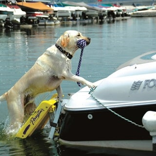 "Pawz Pet Products Dog Boat Ladder Yellow 64"" x 16"""