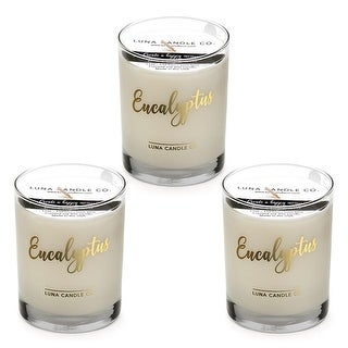 Eucalyptus Scented Candle, Premium Soy Wax, Long Burn, 11 oz (3 Pack)