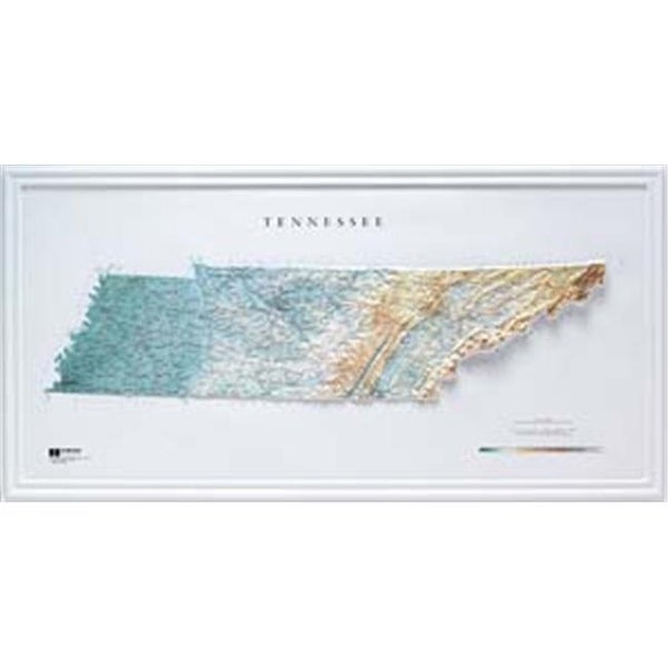Shop Hubbard Scientific Raised Relief Map 962 Tennessee State Map ...