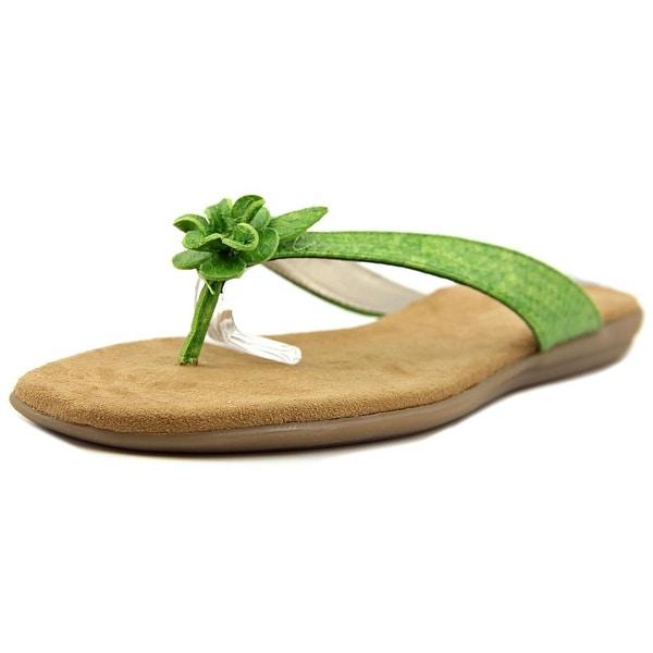 7483fd86c14 Shop Aerosoles Branchlet Women Open Toe Synthetic Green Flip Flop ...
