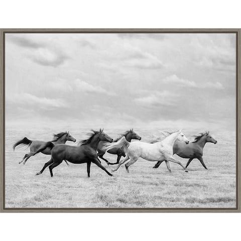 Horse Run I by PHBurchett Framed Canvas Art