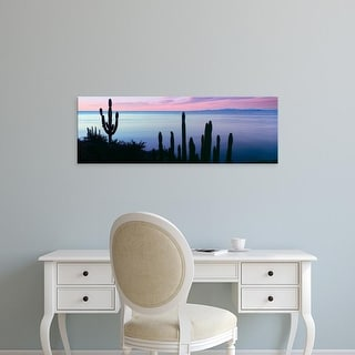 Easy Art Prints Panoramic Image 'Pitayand Cardon cactus plants, BahiLas Palmas, BajCaliforniSur, Mexico' Canvas Art