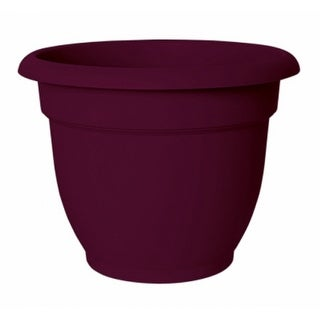 """Bloem AP1029 Ariana Planter with Self-Watering Disc Insert, Passion Fruit, 10"""""""