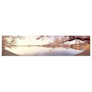 Poster Print entitled Cherry blossoms at the lakeside, Washington DC, - Multi-color