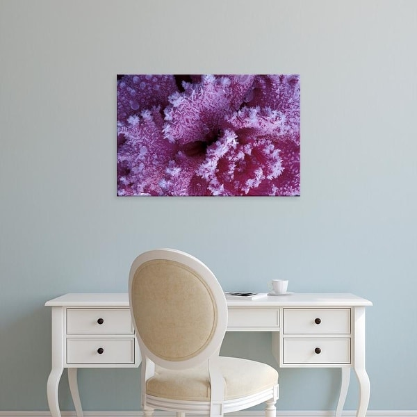 Easy Art Prints Michele Westmorland's 'Frost
