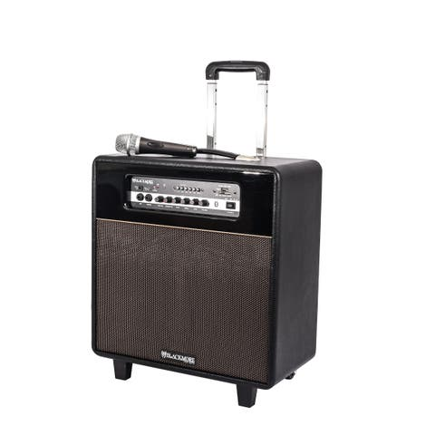 Portable Rechargeable 3-way PA System with Guitar Amp Capabilities, Bluetooth, Built-in MP3 Player and Classic Styling - 10""