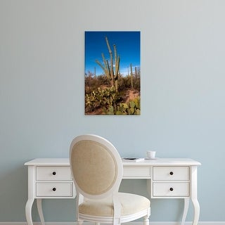 Easy Art Prints Peter Hawkins's 'Saguaro National Park' Premium Canvas Art