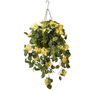 "14"" Yellow Bougainvillea Plant Hanging Basket"