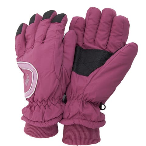Ladies/Womens Extra Warm Thermal Padded Winter/Ski Gloves With Grip - One Size Fits All