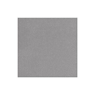 Doodlebug Paper 12x12 Sugar Coated Silver