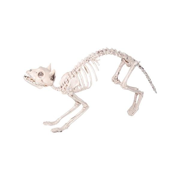 Halloween Prop Decoration: Cat Skeleton