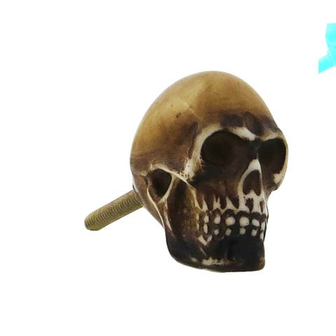 Skulls Resin Knob Pull for Drawers/ Cabinets and Doors (Pack of 6)