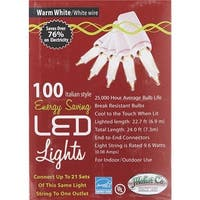 J. Hofert 100Lt Led Mini Ww Light 2290-232 Unit: EACH
