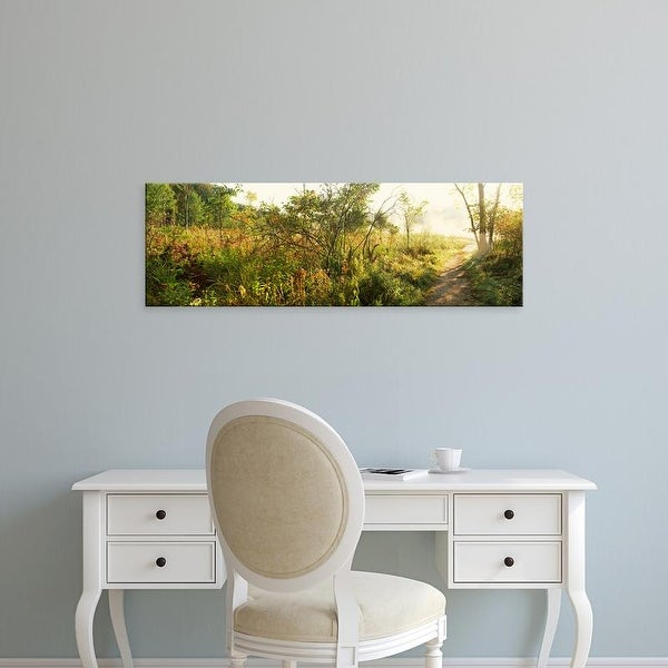 Easy Art Prints Panoramic Images's 'Footpath passing through a forest, Pokagon State Park, Indiana, USA' Canvas Art