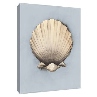 """PTM Images 9-154765  PTM Canvas Collection 10"""" x 8"""" - """"Coastal Shell II"""" Giclee Shells Art Print on Canvas"""