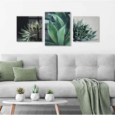 Kate and Laurel Succulent Art by Emiko and Mark Franzen of F2Images