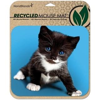 Deluxe ECO Mouse Mat- Kitten