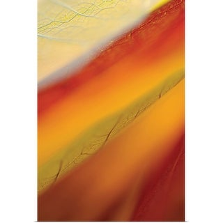 """""""Close-up of dried leaves"""" Poster Print"""