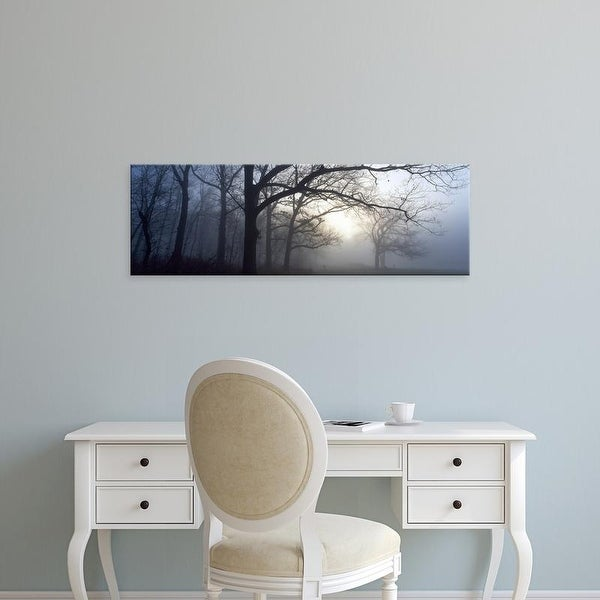 Easy Art Prints Panoramic Images's 'Trees in a forest at dawn, Churchill Woods, Illinois, USA' Premium Canvas Art