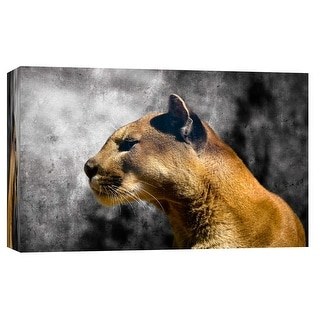 """PTM Images 9-101713  PTM Canvas Collection 8"""" x 10"""" - """"Cougar 1"""" Giclee Cougars Art Print on Canvas"""