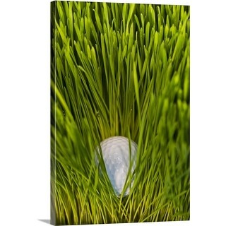 Premium Thick-Wrap Canvas entitled Close-up view of golf ball in grass (4 options available)