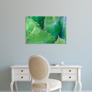 Easy Art Prints Rob Tilley's 'Agave Iii' Premium Canvas Art