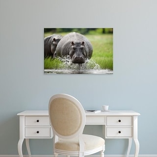 Easy Art Prints Paul Souders's 'Chobe National Park Hippopotamus' Premium Canvas Art
