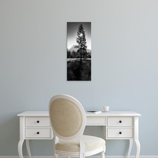 Easy Art Prints Panoramic Image 'Sun Behind Pine Tree, Half Dome, Yosemite Valley, California, USA' Premium Canvas Art