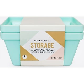 Light Teal-Desktop Storage Nesting Berry Containers 2/Pkg