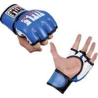 Title MMA Training Fighting Gloves - Blue