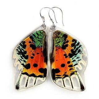 Women's Sunset Moth Rainbow Butterfly Wing Dangle Earrings - multi