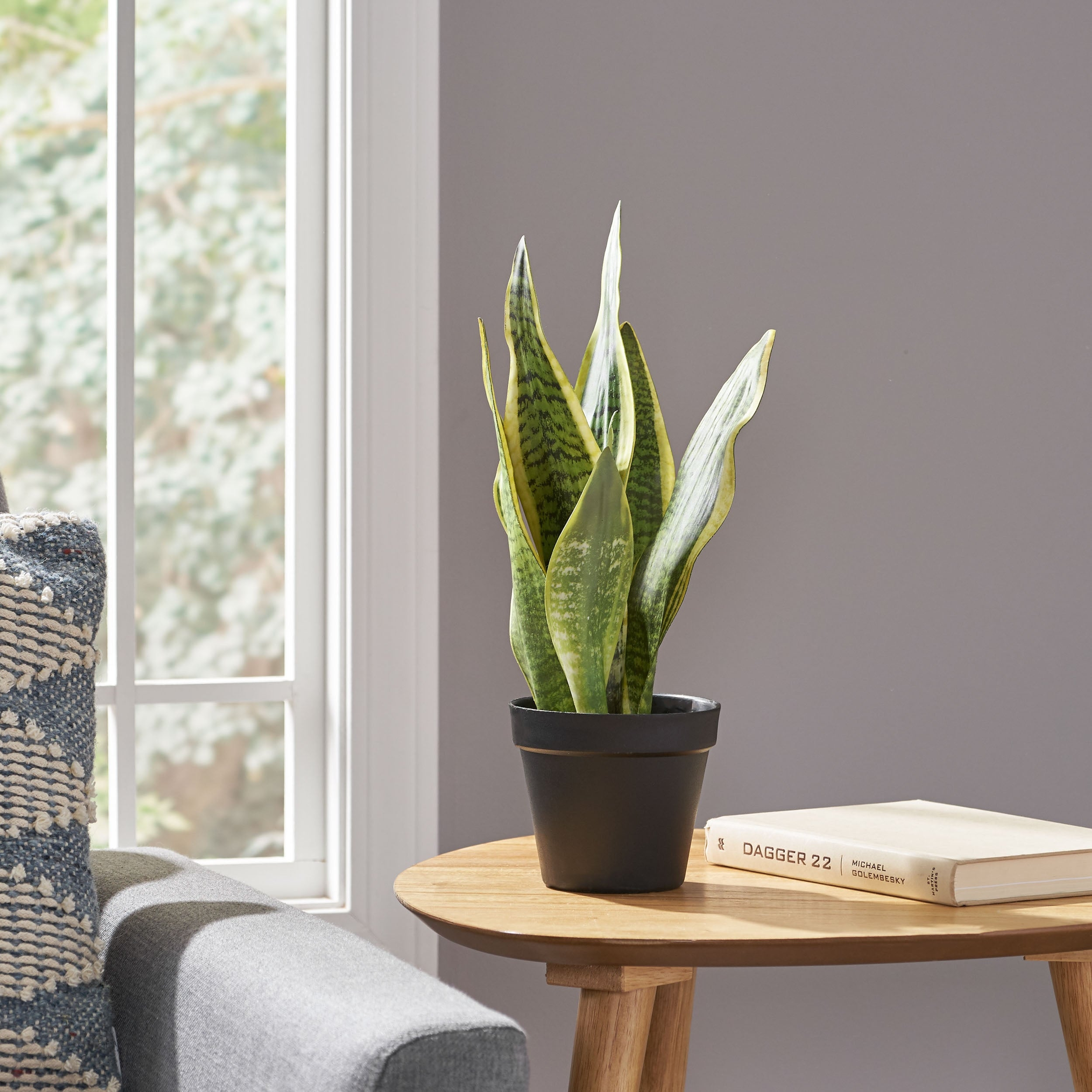 Green Morrow Artificial Tabletop Snake Plant