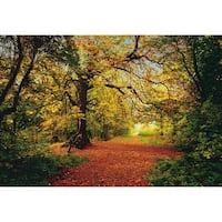 """Brewster 8-068 106"""" x 153"""" - Autumn Forest - Unpasted Vinyl Coated Paper Mural - 8 Panels - N/A"""