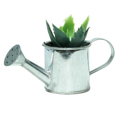 """6"""" Silver and Green Two Tone Tropical Mini Artificial Spikey Succulent in Water Can"""
