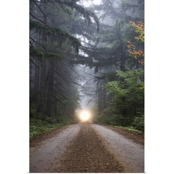 """Dirt road in misty forest with headlights in distance"" Poster Print"