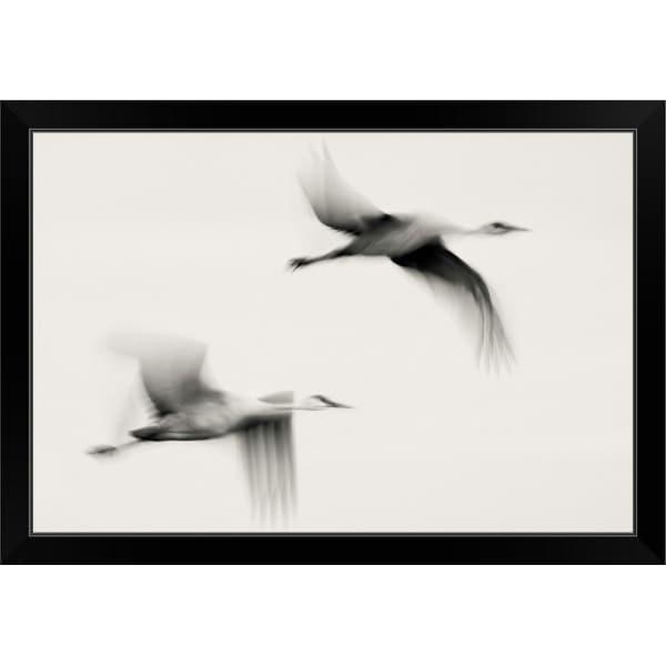 """Flying Dreams"" Black Framed Print"