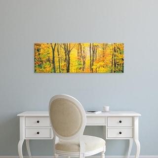 Easy Art Prints Panoramic Images's 'Trees Autumn Quebec Canada' Premium Canvas Art