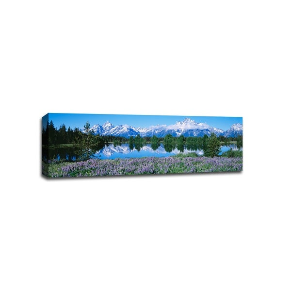 Flowers in Grand Tetons National Park - National Parks - 36x12 Canvas