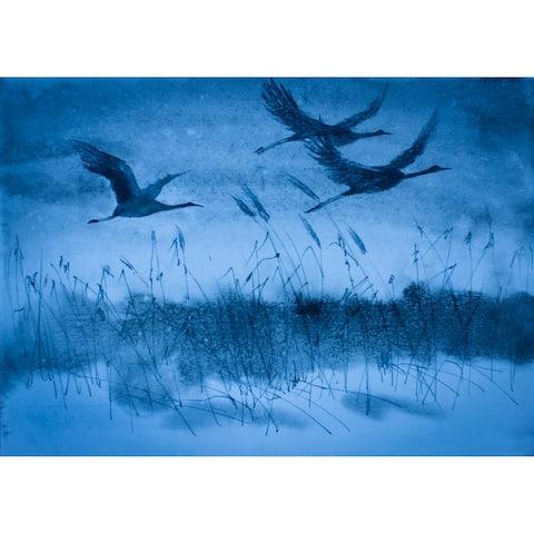 Designart 'Cranes In Flight During Dark Blue Evening Light' Traditional Framed Canvas Wall Art Print