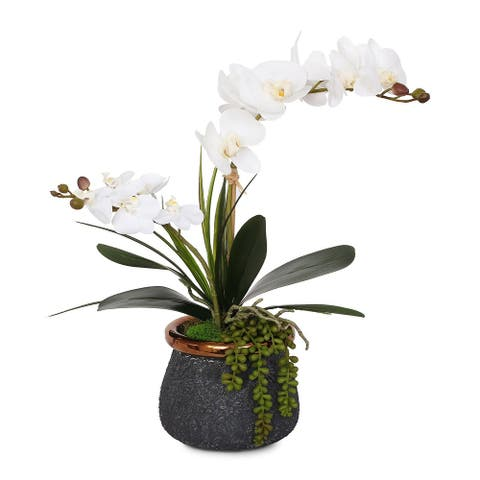 Real Touch White Phalaenopsis Orchids, Leaves, String of Pearls in Pot - 15W x 9D x 19H