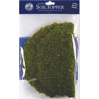 """Moss Pot Toppers 10"""" 3/Pkg-Green"""