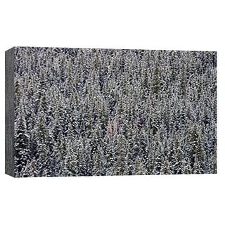 "PTM Images 9-101794  PTM Canvas Collection 8"" x 10"" - ""Snow Trees"" Giclee Forests Art Print on Canvas"
