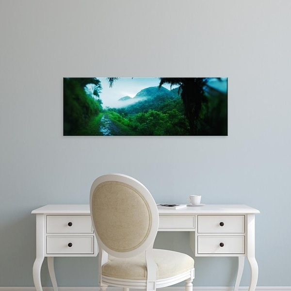 Easy Art Prints Panoramic Images's 'Path in a rainforest, Cayo District, Belize' Premium Canvas Art