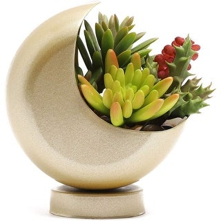 """Link to Gold Decorative Planter for Flower Cactus Succulent, Half Moon Shape - 4.5"""" x 3.5"""" x 5.5"""" Similar Items in Planters, Hangers & Stands"""