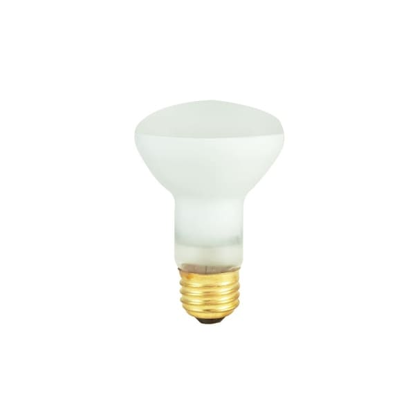 Bulbrite 292003 Pack Of 10 30 Watt Dimmable R20 Shaped Medium E26 Base Incandescent Bulbs Clear Free Shipping On Orders Over 45